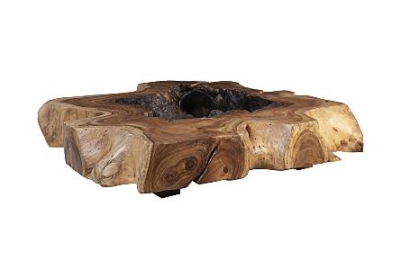 Chamcha Root Coffee Table