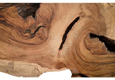Chamcha Wood Thick Coffee Table on Block Legs Freeform