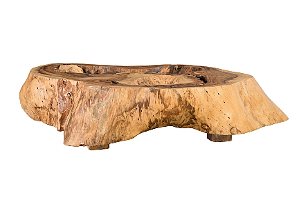 Chamcha Wood Thick Coffee Table on Block Legs Freeform