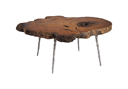 Teng Burled Wood Coffee Table Forged Legs