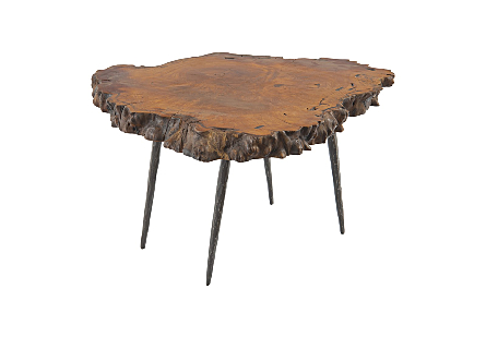 Mai Theng Burled Wood Coffee Table Forged Metal Legs