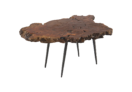 Payom Burled Wood Coffee Table Forged Metal Legs
