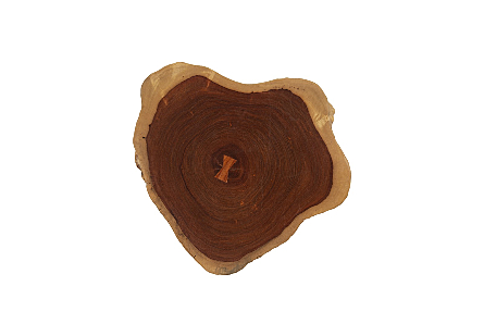 Pradoo Burled Wood Wall Decor