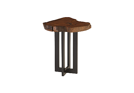 Pradoo Burled Wood Side Table Metal Base