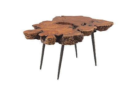Pradoo Burled Wood Side Table Forged Metal Legs