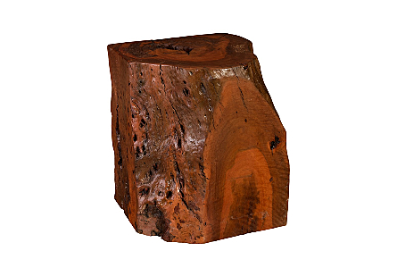 Payom Burled Wood Side Table