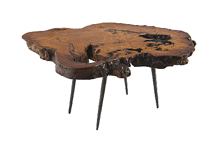Teng Burled Wood Side Table Forged Metal Legs