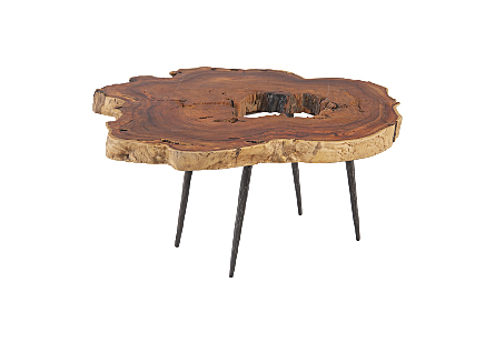 Makha Burl Wood Coffee Table Forged Legs