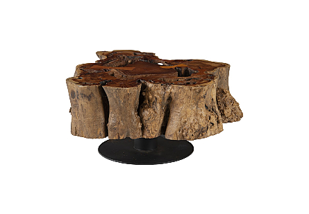 Burled Rosewood Coffee Table Black Metal Base