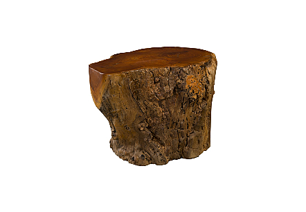 Jackfruit Burl Side Table