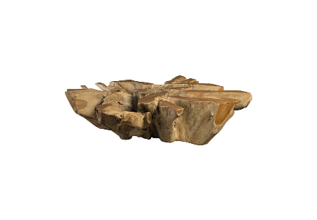 Teak Root Coffee Table Square