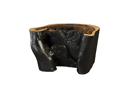 Chamcha Wood Coffee Table Burnt Edge