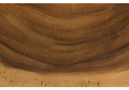 Chamcha Wood Desk