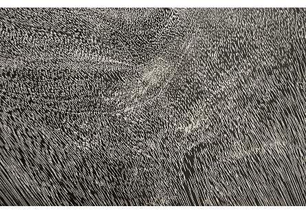 River Stone Wall Tile Grey Stone, XL