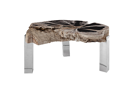 Petrified Coffee Table stainless Steel legs