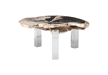 Petrified Wood Coffee Table Stainless Steel Legs