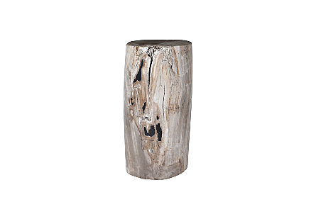 Petrified Wood Pedestal
