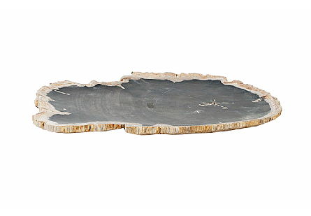 Petrified Wood Plate Assorted Color and Shape, LG