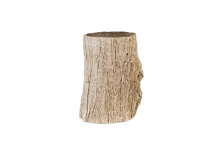 Colossal Petrified Wood Pedestal