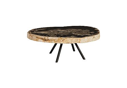 Petrified Coffee Table