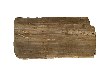 Petrified Wood Coffee Table Stainelss Steel Base