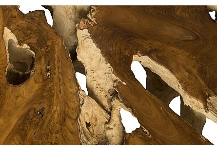 Freeform Root Coffee Table Teak Wood, Round