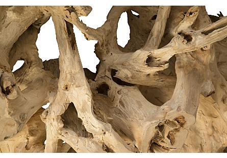 Teak Root Coffee Table Bleached