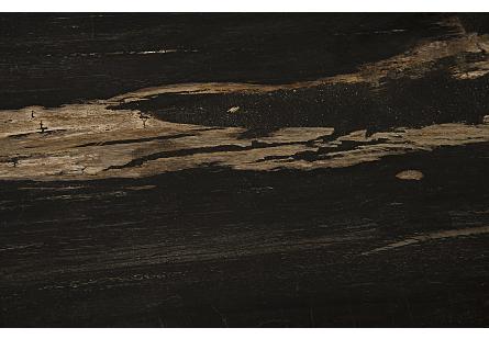 Petrified Wood Side Table Laminated
