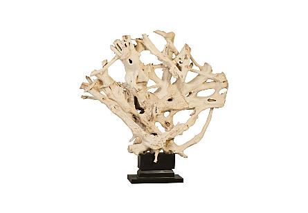 Teak Root Sculpture on Base