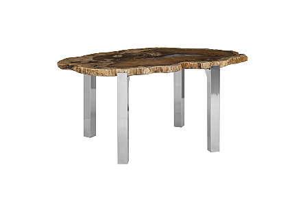 Petrified Wood Dining Table Top Stainless Steel Legs, Glossy