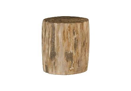 "Petrified Wood Stool, Polished , Cream , 12""-14"" x 17""-19""h Assorted"