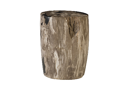 "Petrified Wood Stool, Polished , Mixed , 12""-14"" x 17""-19""h  Assorted"
