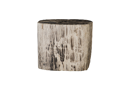 "Petrified Wood Stool, Polished, Mixed , 15""-18"" x 17""-19""h Assorted"