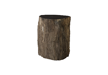 "Petrified Wood Stool, Rough, Mixed 10""-14"" x 17""-19""h Assorted"