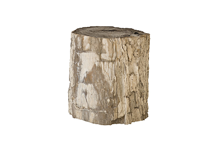 "Petrified Wood Stool, Rough, Mixed , 19""-24"" x 17""-19""h  Assorted"