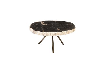 Petrified Wood Coffee Table Assorted