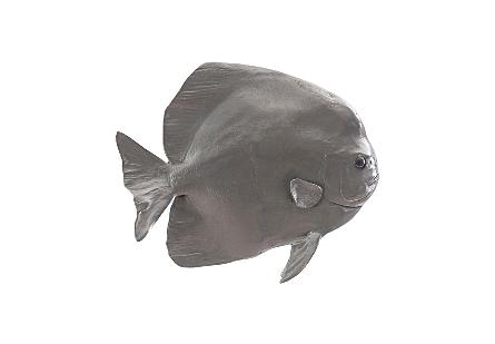 Australian Batfish Polished Aluminum