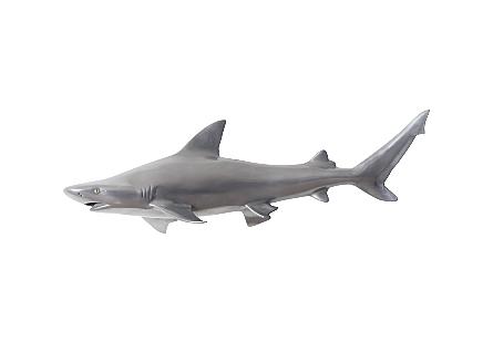 Black Tip Reef Shark Polished Aluminum