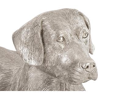 Labrador, Laying Silver Leaf