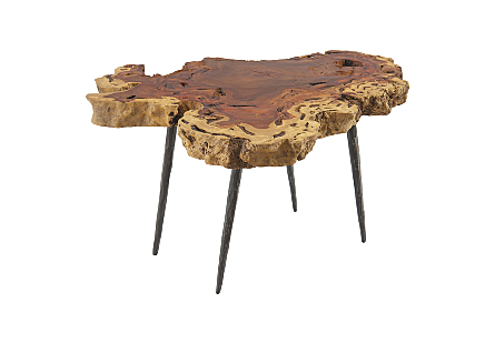 Makha Burl Wood CoffeeTable w/Forged Brass Legs