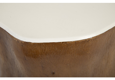 Chamcha Wood Side Table Glossy White Top