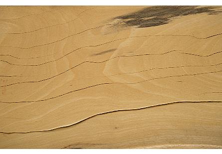 Tamarind Wood Low Bench
