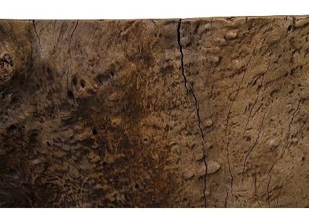 Plumeria Wood Coffee Table