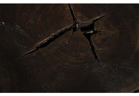 Black Wood Coffee Table w/Jingjoe Legs