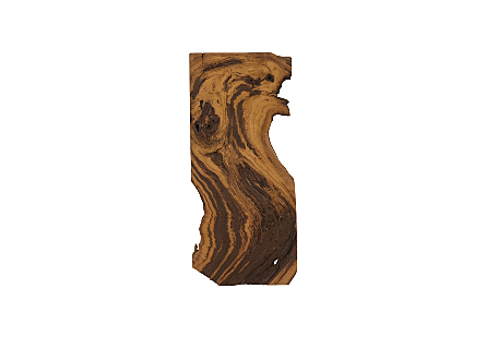 Sliced Wood Wall Art, Assorted Natural, Rectangular, SM